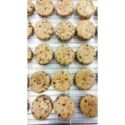 Chocolate Chip Dehydrator Cookies - Raw, Vegan, Gluten Free