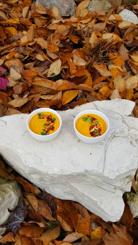 currysoup2